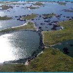 Threats to the Pantanal_11.jpg