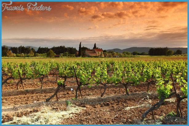 Top 10 Wine Regions to Discover by Boat_10.jpg