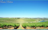 Top 10 Wine Regions to Discover by Boat_7.jpg