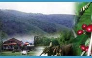 Travel to Coorg_7.jpg