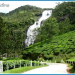 Traveling in Munnar _14.jpg