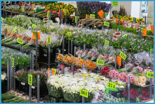 Fabulous Flowers - Wholesale to the Public Flower Sales - Wholesale