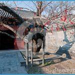 Wen Tianxiang and Shenzhen_15.jpg