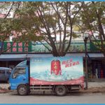 Wen Tianxiang and Shenzhen_2.jpg