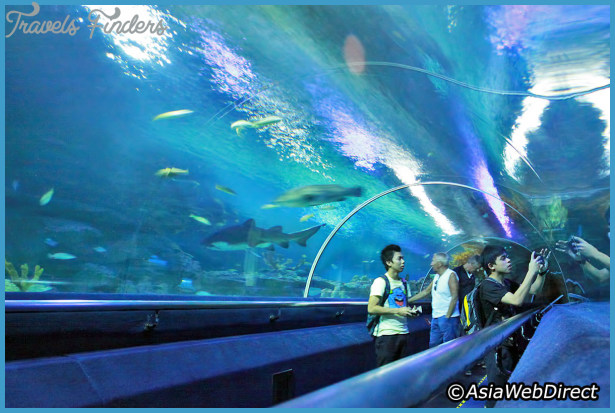 10 family-friendly things to do on a trip to Malaysia_5.jpg