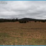 Hunting Land for Sale - In High Demand_10.jpg