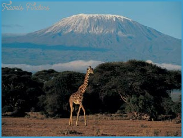Safari Holiday to Tanzania_19.jpg