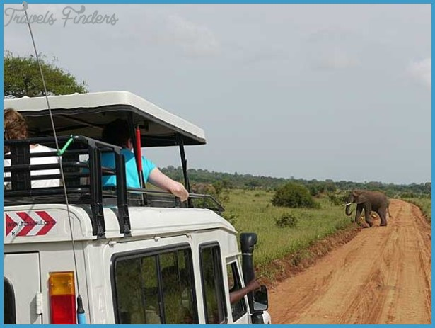 Safari Holiday to Tanzania_2.jpg