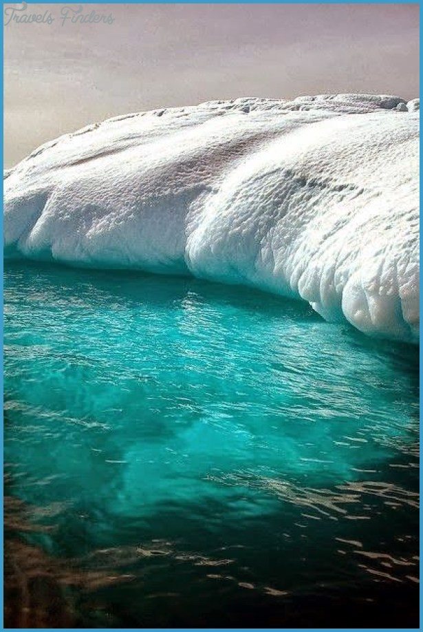 Visit antarctica with tauck tours travelsfinders com for Antarctica places to stay