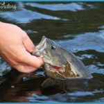 How to Choose Your Ontario Fishing Location - Find Great Trip Sites_11.jpg