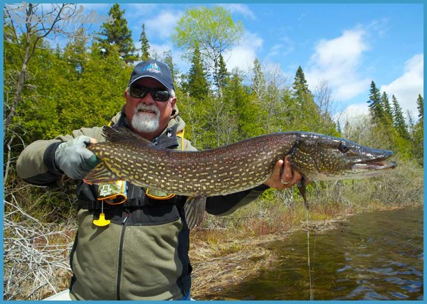 How to Choose Your Ontario Fishing Location - Find Great Trip Sites_4.jpg