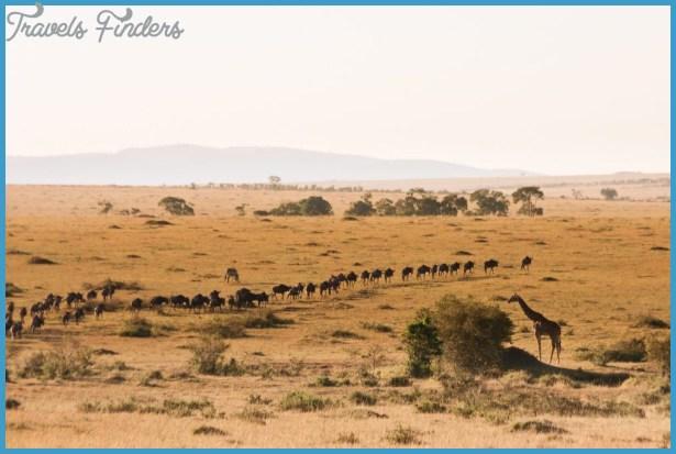Maasai Mara Kenya_7.jpg