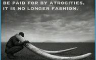 Africa Wildlife Travel Quotes _28.jpg