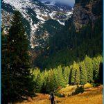 Carpathians Mountains_8.jpg