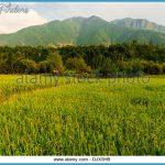 Kashmir Valley India_6.jpg