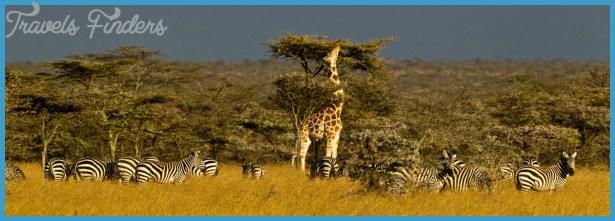 Kenya Luxury Wildlife Travel _11.jpg