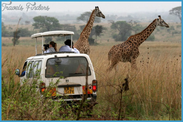 Kenya National Wildlife Travel _9.jpg