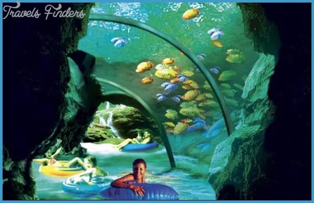 SeaWorld Orlando Aquatica_3.jpg