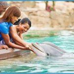 SeaWorld Orlando Exhibits Fun Facts!_10.jpg