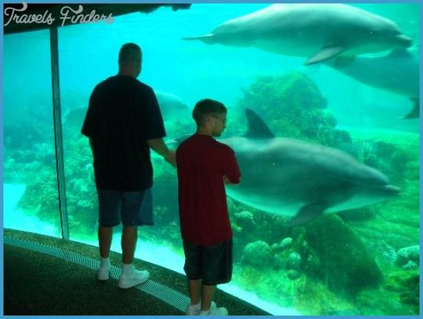 SeaWorld Orlando Exhibits_7.jpg