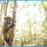 Wildlife Photography Travel _16.jpg