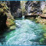 Wildlife Travel To Slovenia_0.jpg
