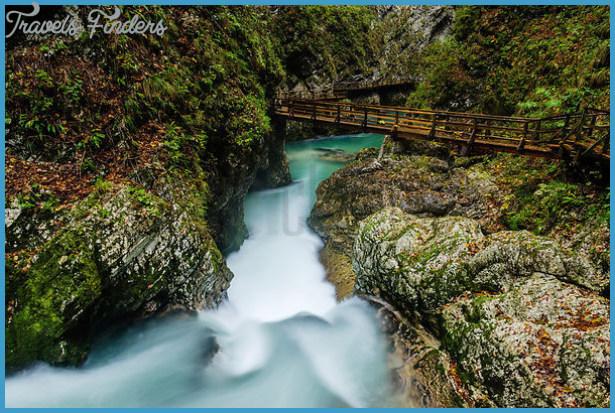 Wildlife Travel To Slovenia_2.jpg