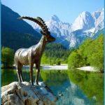 Wildlife Travel To Slovenia_5.jpg