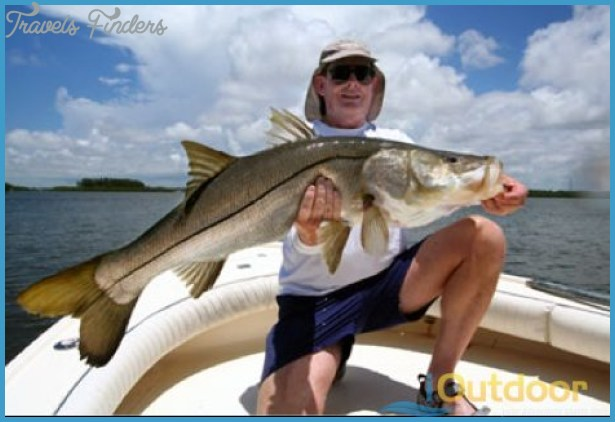 Fishing cape coral canals travelsfinders com for Cape coral fishing
