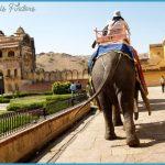 India Vacations_4.jpg