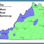 VIRGINIA MAP ZONE_9.jpg