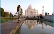When Should I Go For India Travel_11.jpg