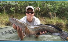 best freshwater fishing spots in miami Archives