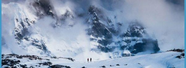 Antarctica Travel Deals_16.jpg