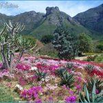 How To Plan A Trip To Kirstenbosch_11.jpg