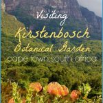 How To Plan A Trip To Kirstenbosch_14.jpg