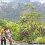 How To Plan A Trip To Kirstenbosch_2.jpg