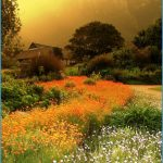 Kirstenbosch Trip Planner_1.jpg