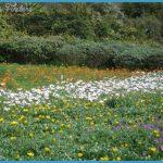 Kirstenbosch Trip Planner_12.jpg