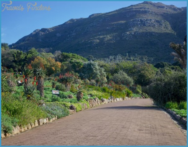 Kirstenbosch Trip Planner_3.jpg