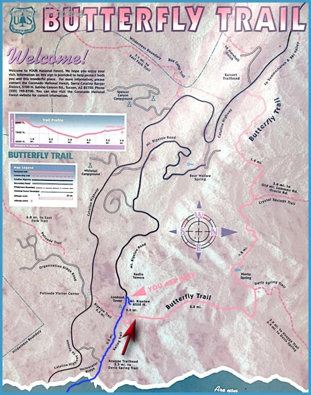 Mount Lemmon Hiking Map_3.jpg