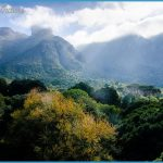 Trip To Kirstenbosch Package_1.jpg