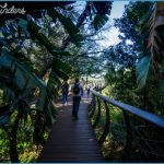 Trip To Kirstenbosch Package_12.jpg
