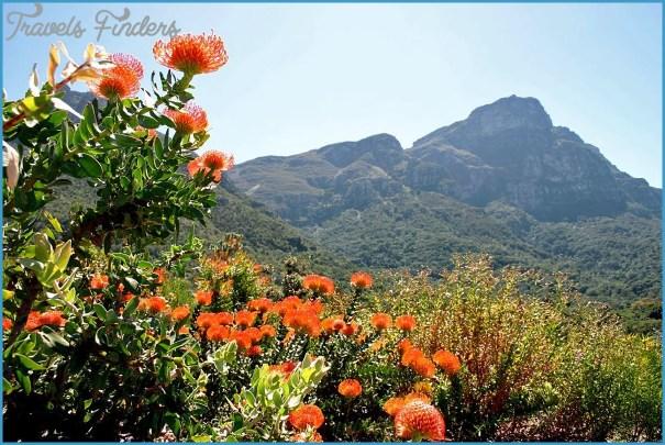 Working in Kirstenbosch_10.jpg