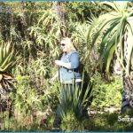 Working in Kirstenbosch_8.jpg