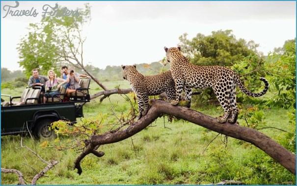 kruger-safari-ALISTAFRICAMIDEAST0817.jpg?itok=b6aTcJDE