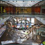 BEST MUSEUMS IN DC_12.jpg