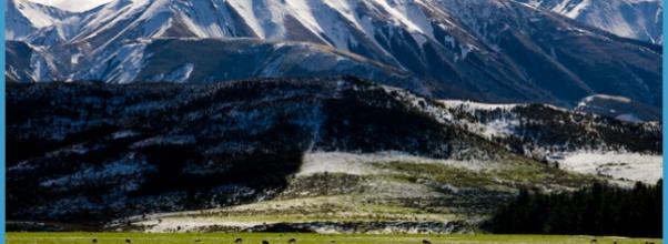Top Travel Destinations New Zealand_0.jpg