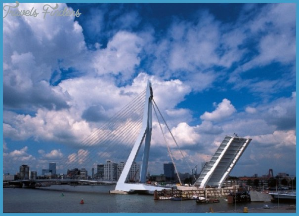 Erasmus_bridge_22.jpg
