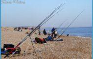 shorefishing3.jpg